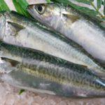 魚を食って運動すれば、再発率は下がる