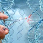 がんは遺伝子の異常以外でも、エピジェネティックに生じる