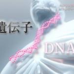 NHKスペシャル「シリーズ 人体Ⅱ 遺伝子」第1集