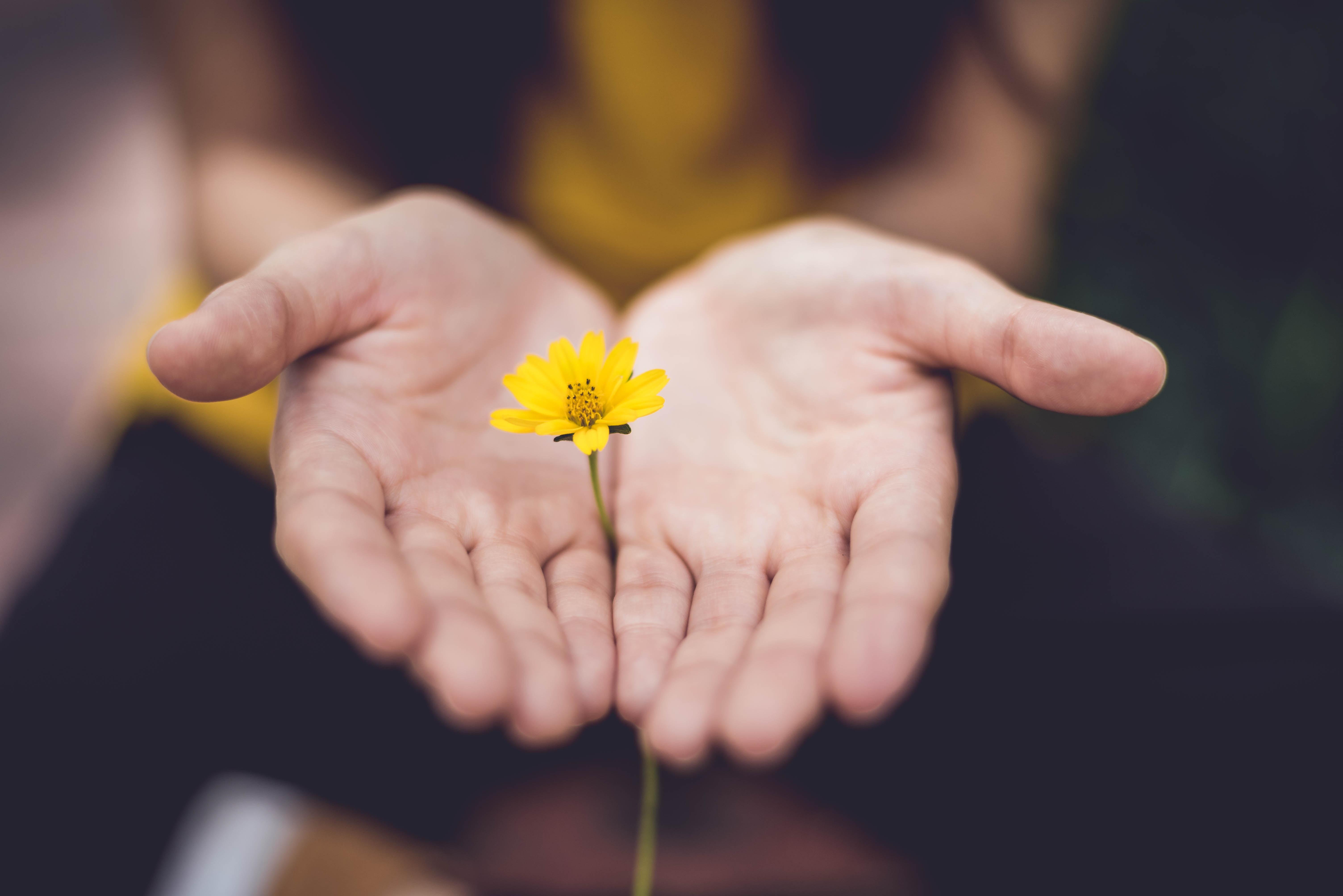 hope-flower