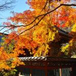 高尾山へ紅葉ドライブ