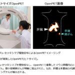 1cm未満の微小な膵臓がんを検出:放医研