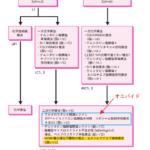 膵癌診療ガイドライン2019 一部改定