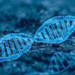 マイクロサテライト不安定性検査がすべての固形がんに適用される:キイトルーダにも